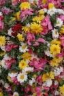 Madurai Flower Market